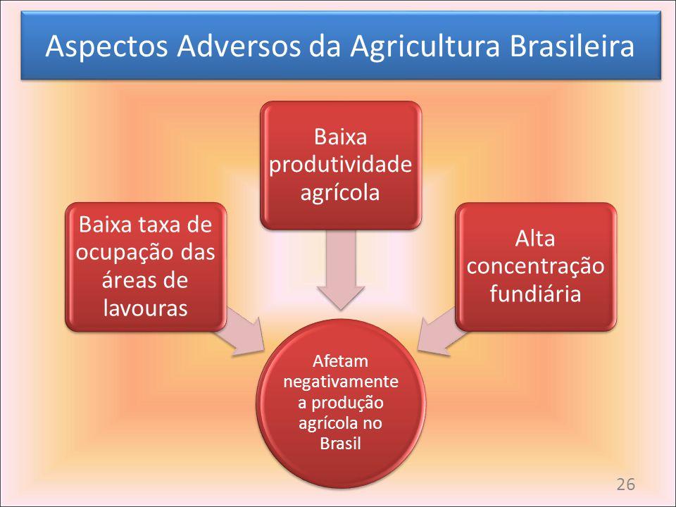 Aspectos Adversos da Agricultura Brasileira