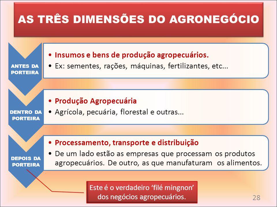 AS TRÊS DIMENSÕES DO AGRONEGÓCIO