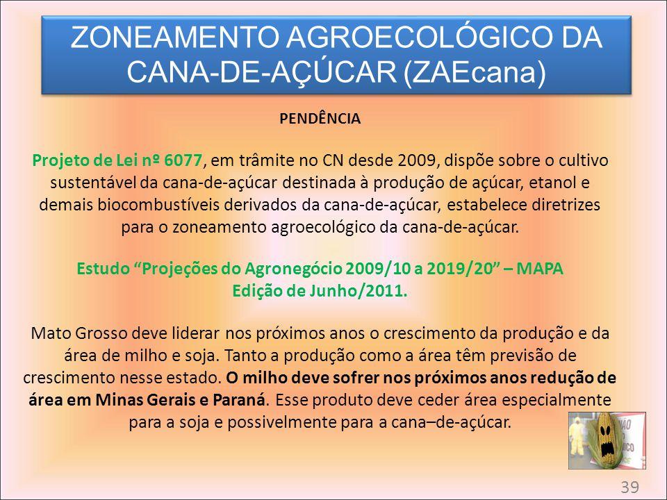 Estudo Projeções do Agronegócio 2009/10 a 2019/20 – MAPA