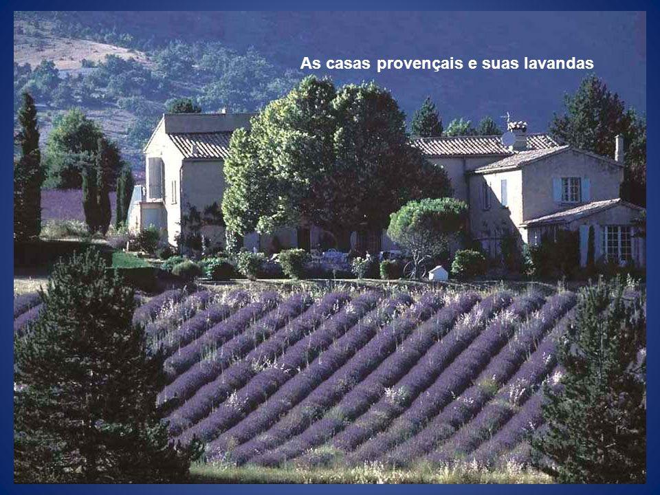 As casas provençais e suas lavandas