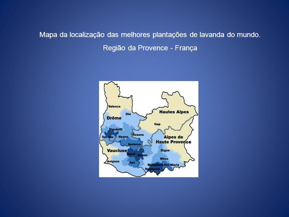 Mapa da localização das melhores plantações de lavanda do mundo.