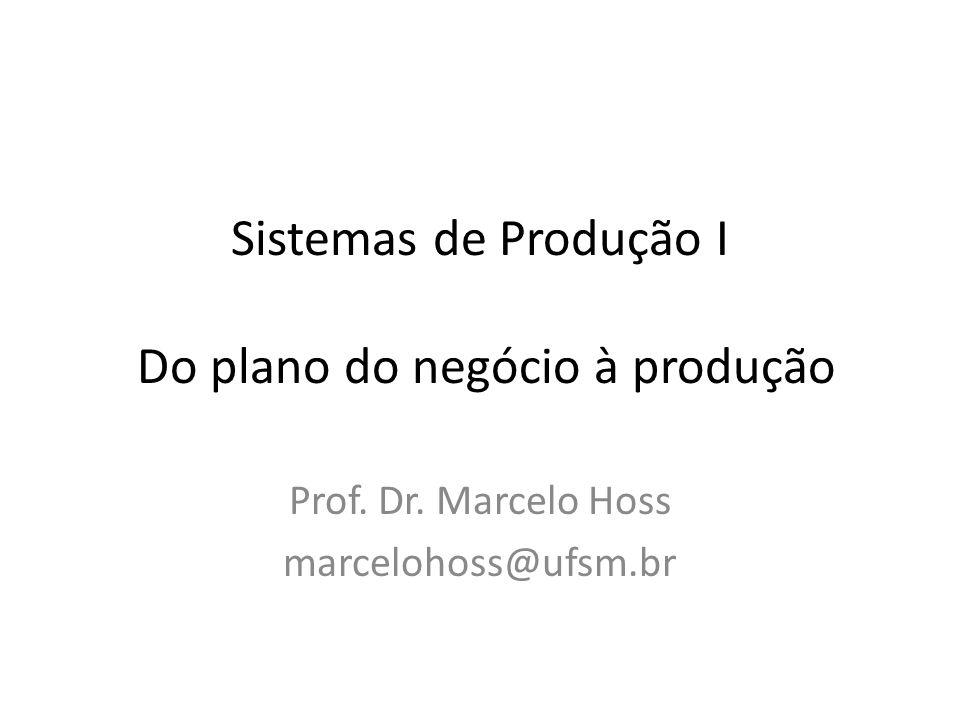 Sistemas de Produção I Do plano do negócio à produção