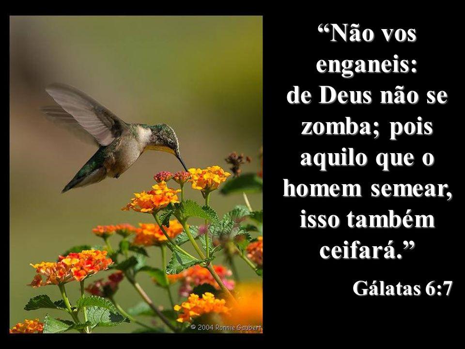 Não vos enganeis: de Deus não se zomba; pois aquilo que o homem semear, isso também ceifará. Gálatas 6:7.