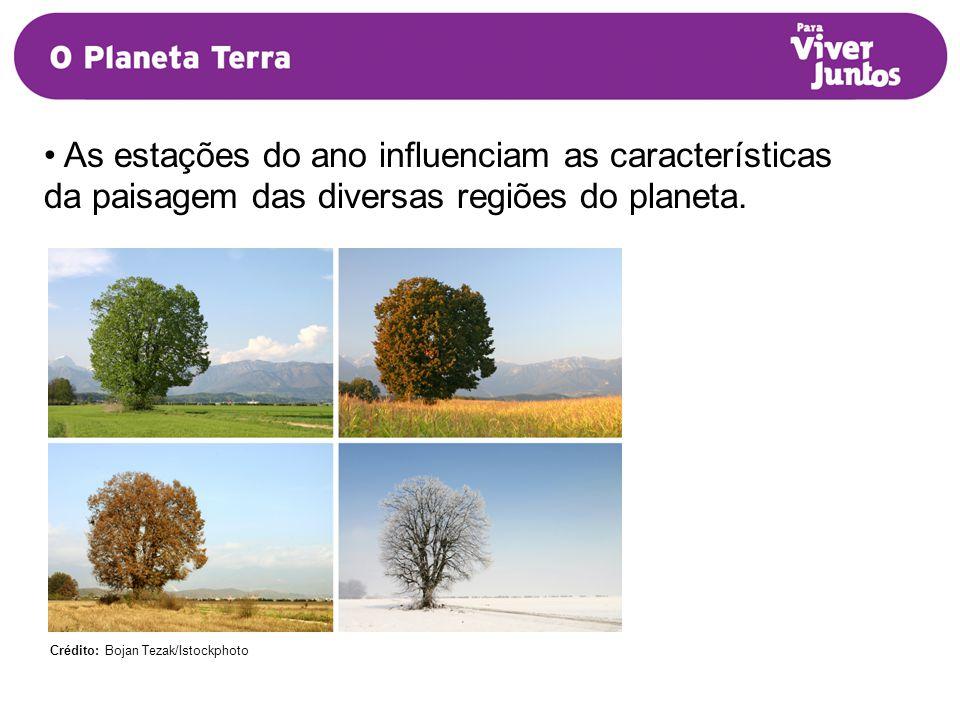 As estações do ano influenciam as características da paisagem das diversas regiões do planeta.