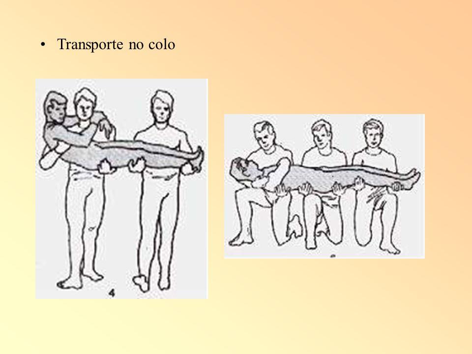 Transporte no colo