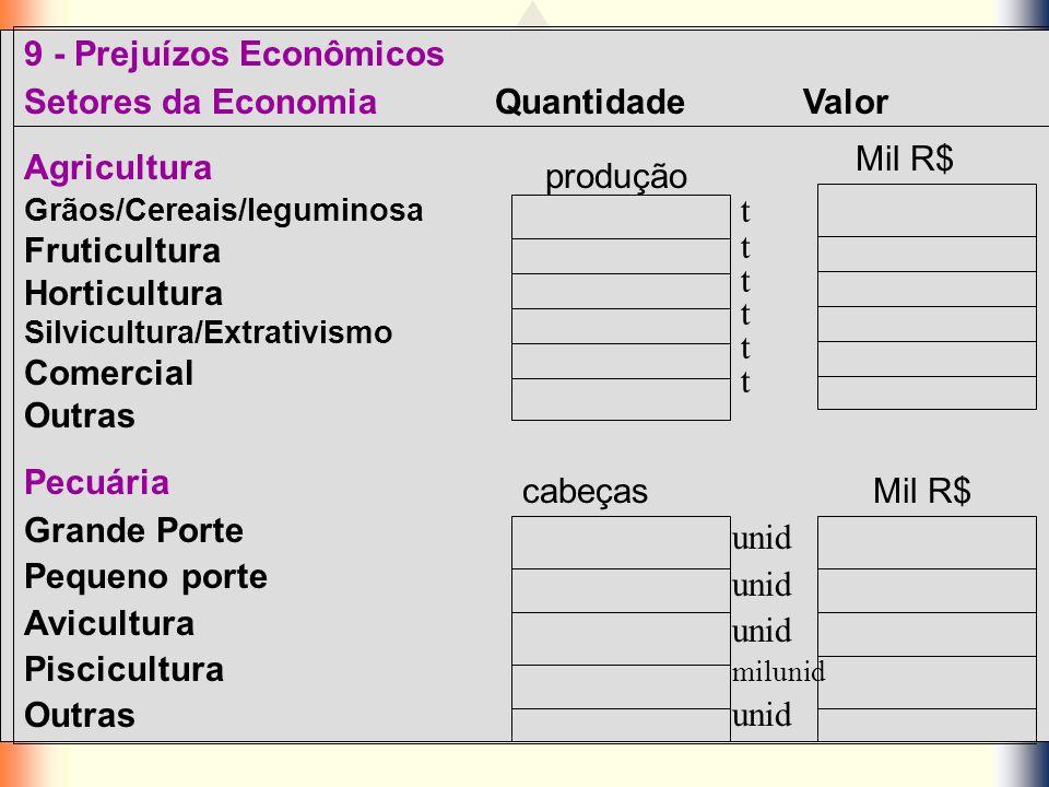 9 - Prejuízos Econômicos Setores da Economia Quantidade Valor