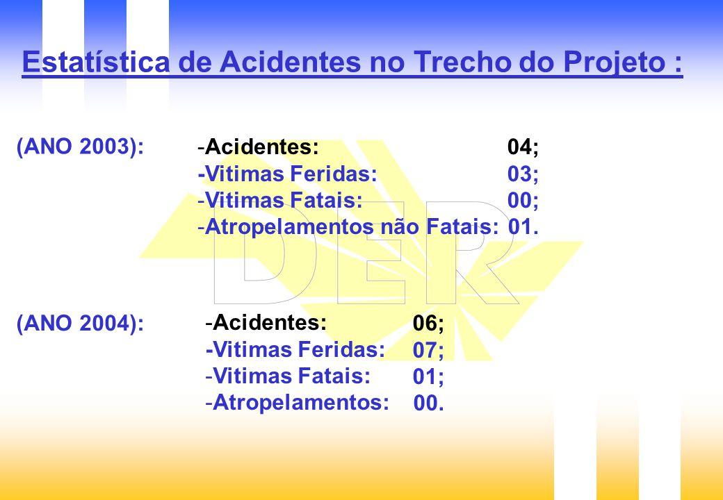 Estatística de Acidentes no Trecho do Projeto :