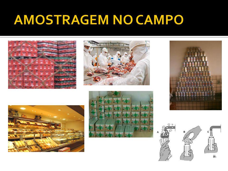 AMOSTRAGEM NO CAMPO