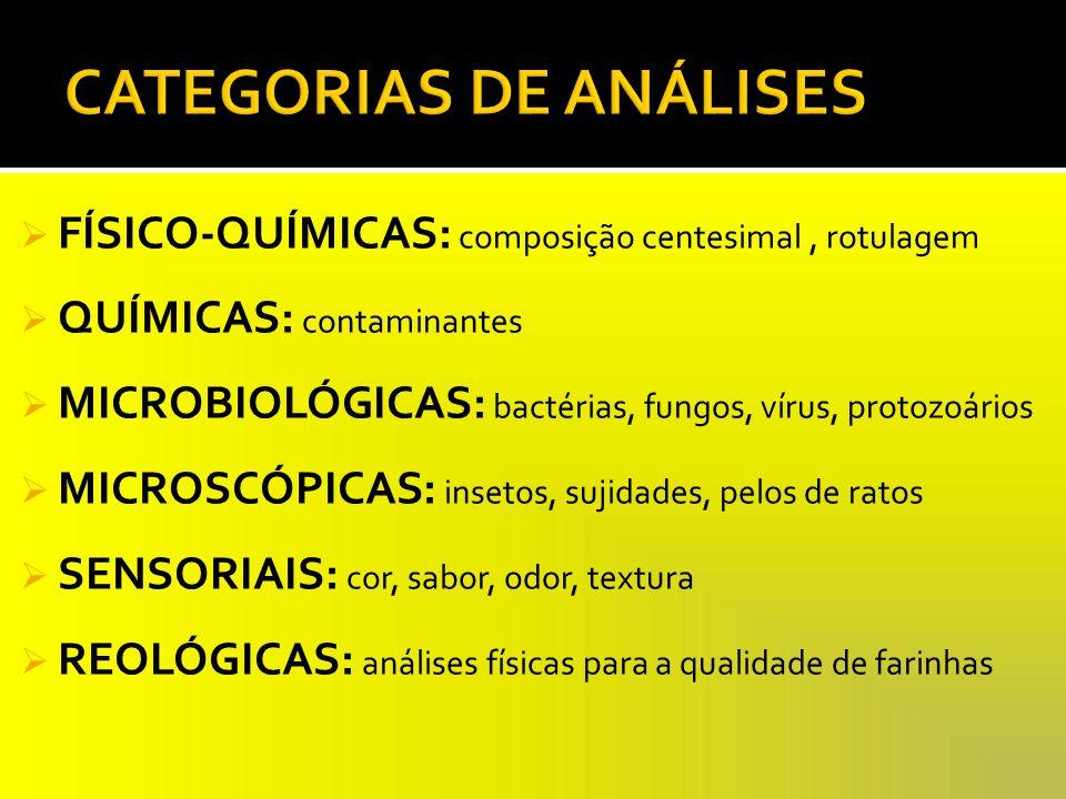 CATEGORIAS DE ANÁLISES