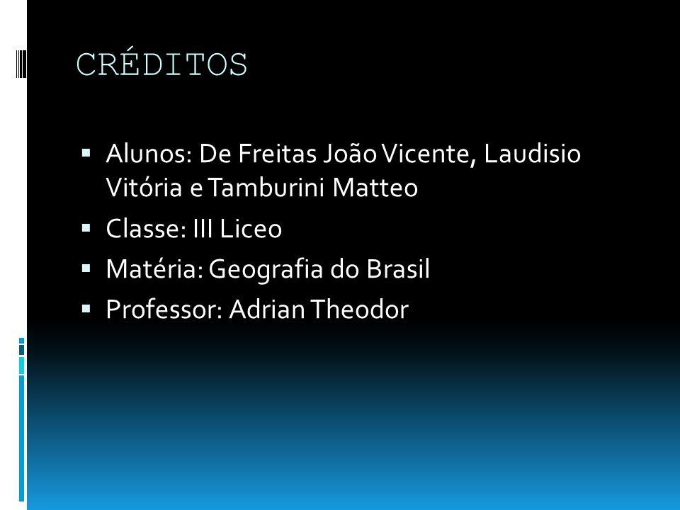 CRÉDITOS Alunos: De Freitas João Vicente, Laudisio Vitória e Tamburini Matteo. Classe: III Liceo.
