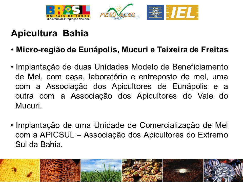 Apicultura Bahia. Micro-região de Eunápolis, Mucuri e Teixeira de Freitas.