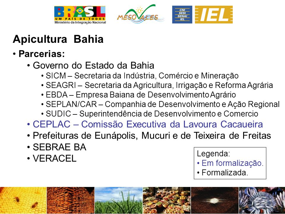Apicultura Bahia Parcerias: Governo do Estado da Bahia