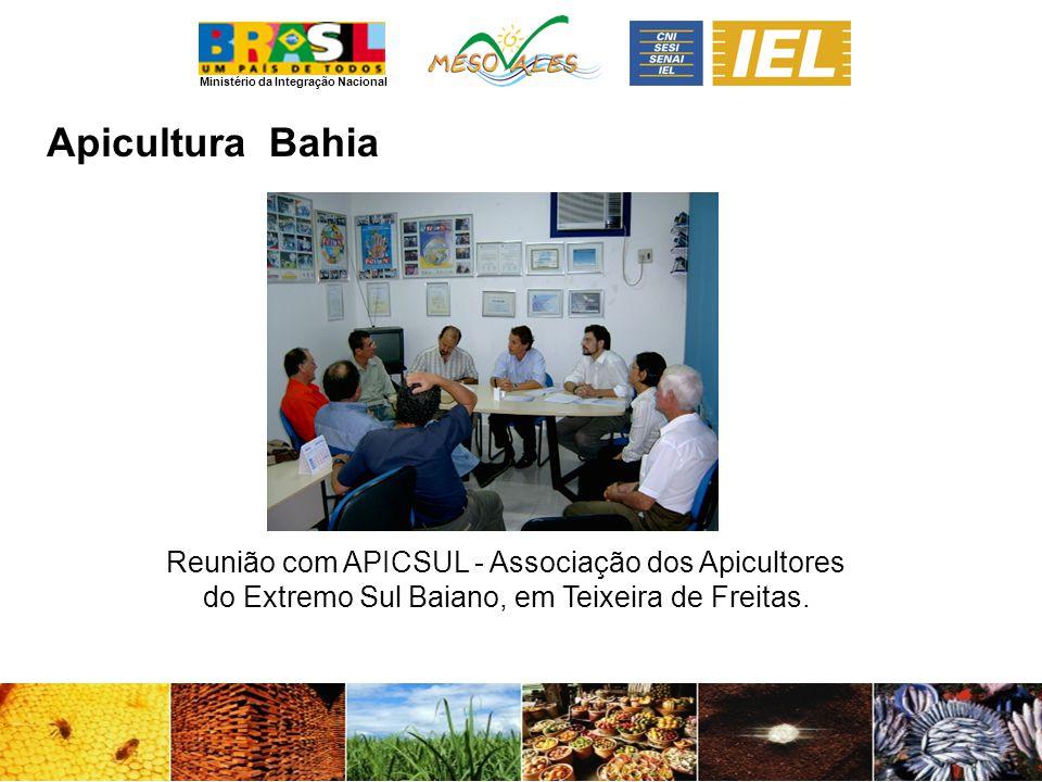 Apicultura Bahia.