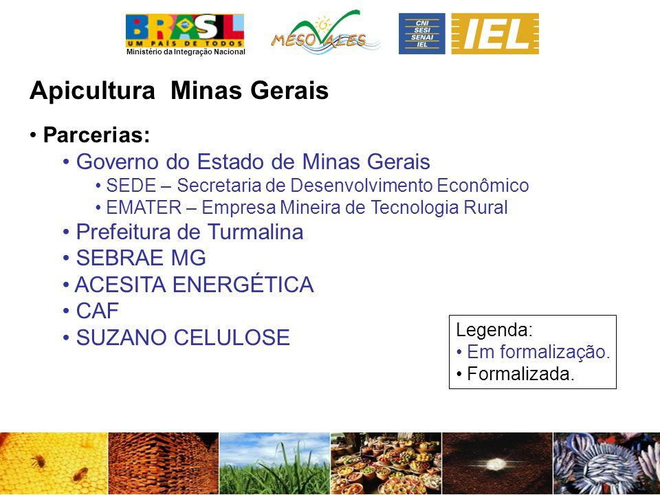 Apicultura Minas Gerais Parcerias: Governo do Estado de Minas Gerais