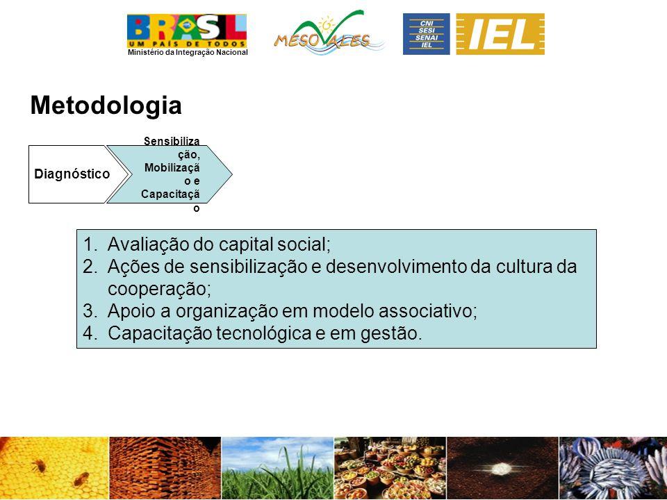 Metodologia Avaliação do capital social;