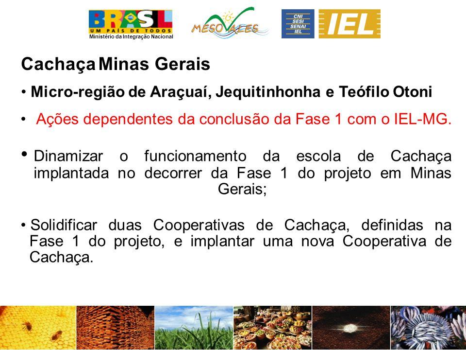 Cachaça Minas Gerais. Micro-região de Araçuaí, Jequitinhonha e Teófilo Otoni. Ações dependentes da conclusão da Fase 1 com o IEL-MG.