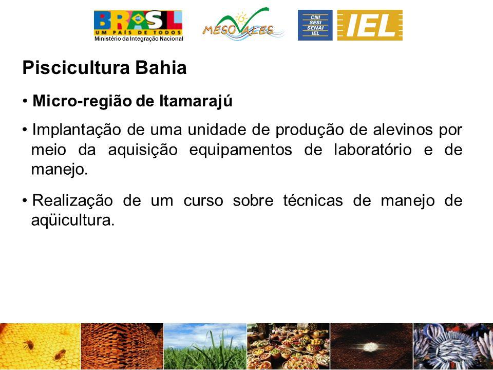 Piscicultura Bahia Micro-região de Itamarajú