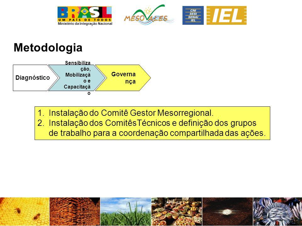 Metodologia Instalação do Comitê Gestor Mesorregional.