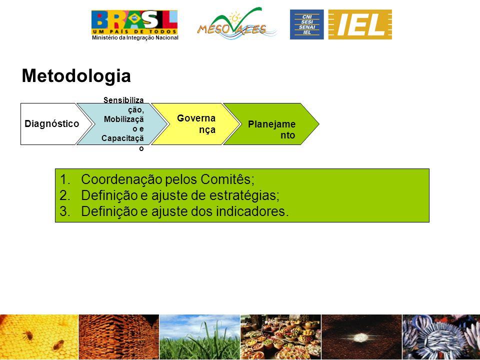 Metodologia Coordenação pelos Comitês;