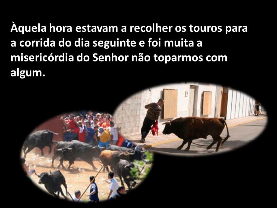 Àquela hora estavam a recolher os touros para a corrida do dia seguinte e foi muita a misericórdia do Senhor não toparmos com algum.