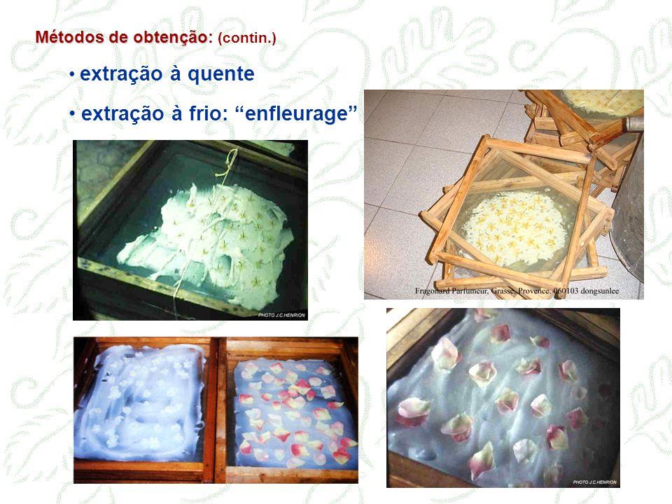 extração à frio: enfleurage