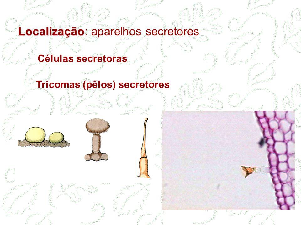 Localização: aparelhos secretores Células secretoras