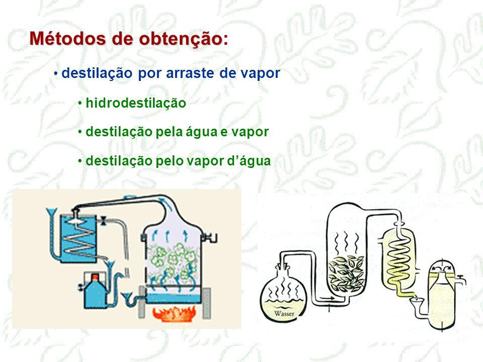 Métodos de obtenção: destilação por arraste de vapor hidrodestilação