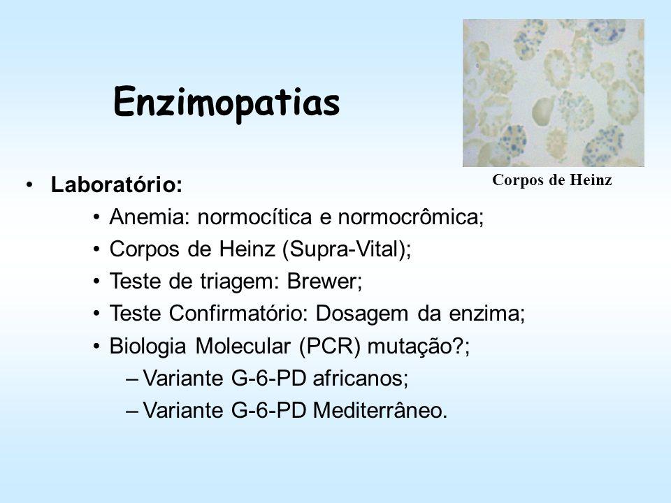 Enzimopatias Laboratório: Anemia: normocítica e normocrômica;