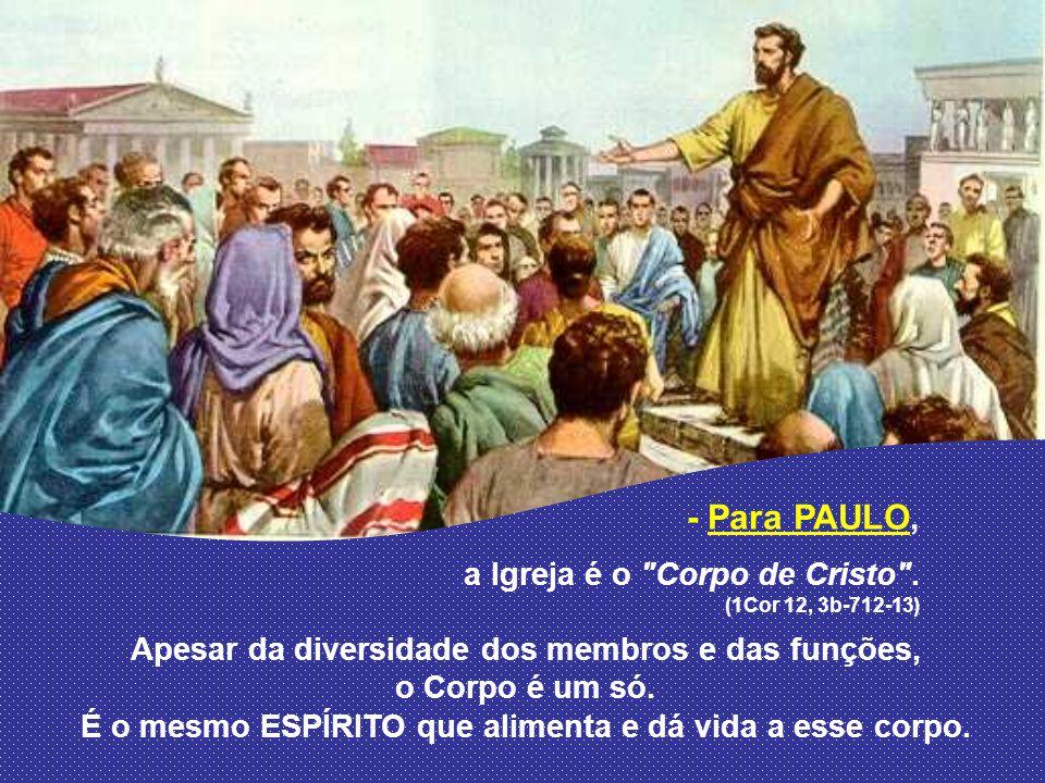 - Para PAULO, Apesar da diversidade dos membros e das funções,