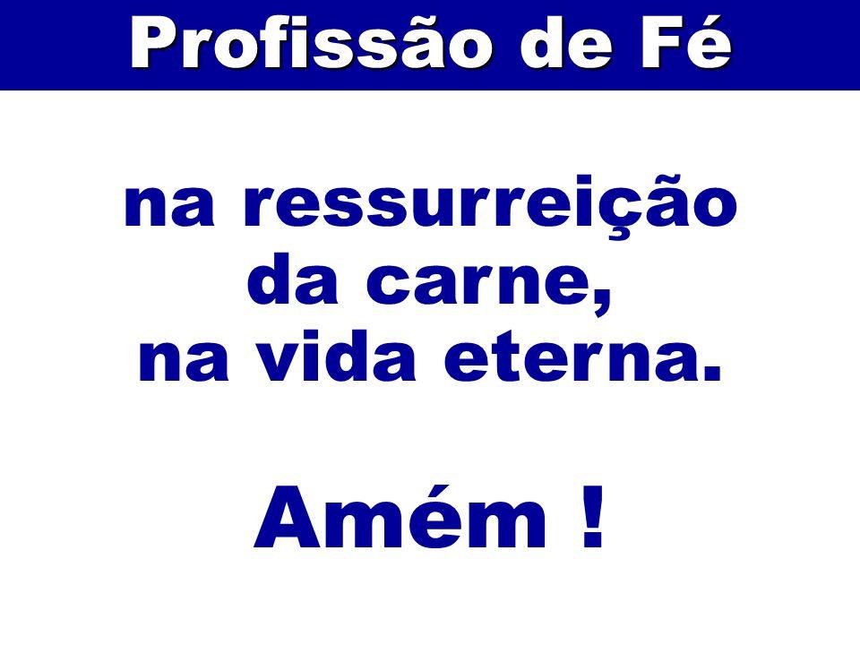 Profissão de Fé na ressurreição da carne, na vida eterna. Amém ! 74