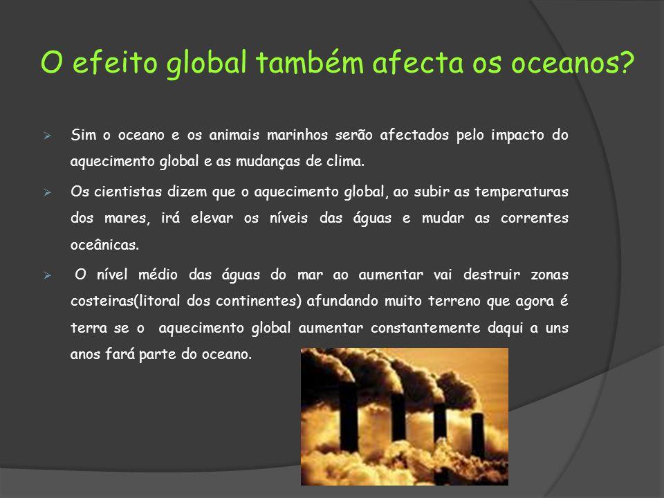 O efeito global também afecta os oceanos