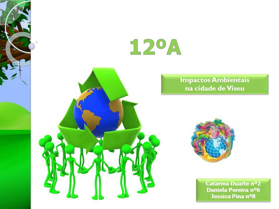 12ºA Impactos Ambientais na cidade de Viseu Catarina Duarte nº2