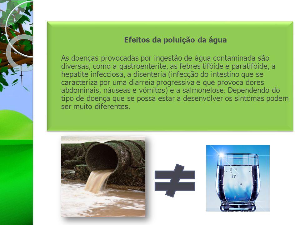 Efeitos da poluição da água