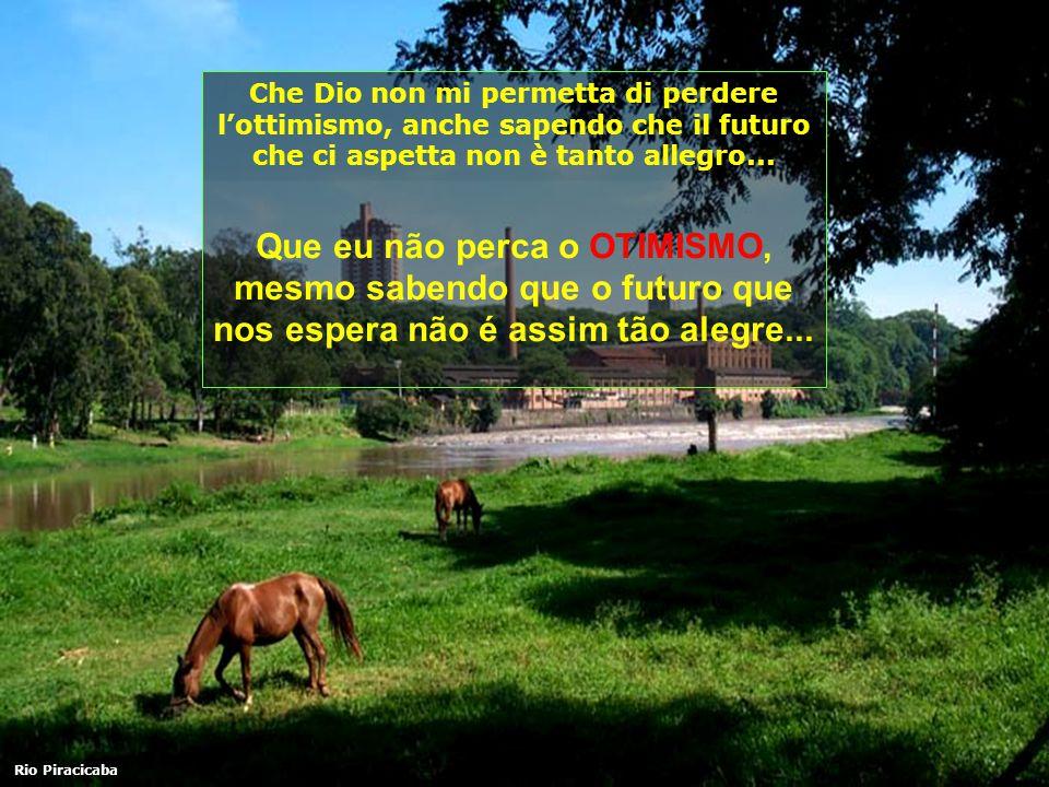 Che Dio non mi permetta di perdere l'ottimismo, anche sapendo che il futuro che ci aspetta non è tanto allegro...