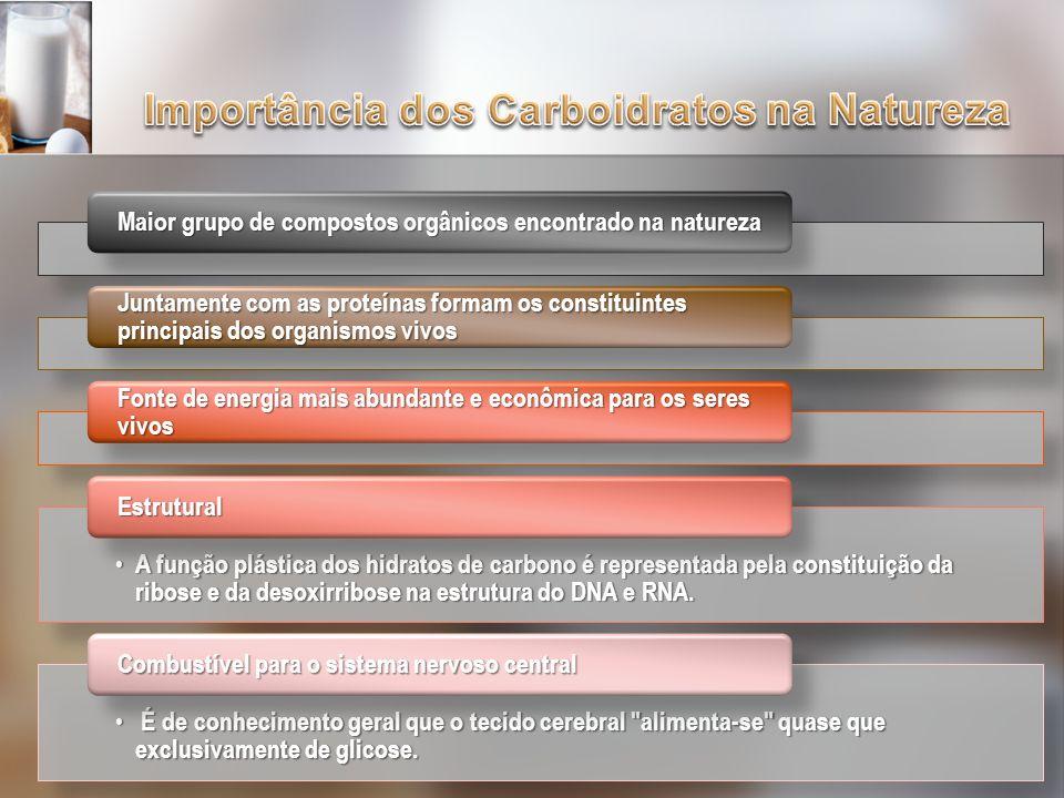 Importância dos Carboidratos na Natureza
