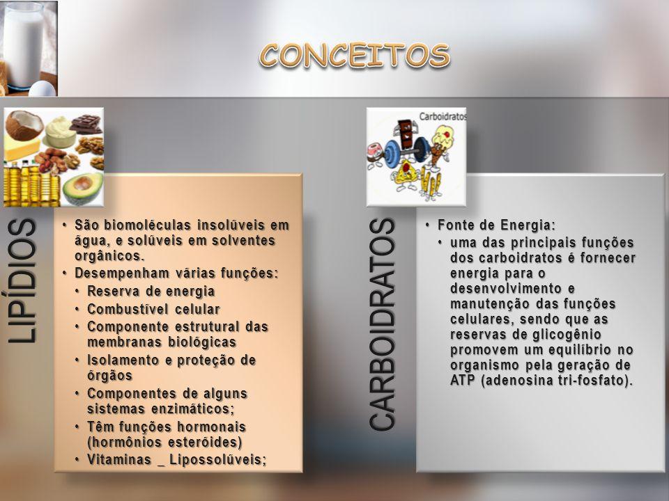 CONCEITOS LIPÍDIOS CARBOIDRATOS