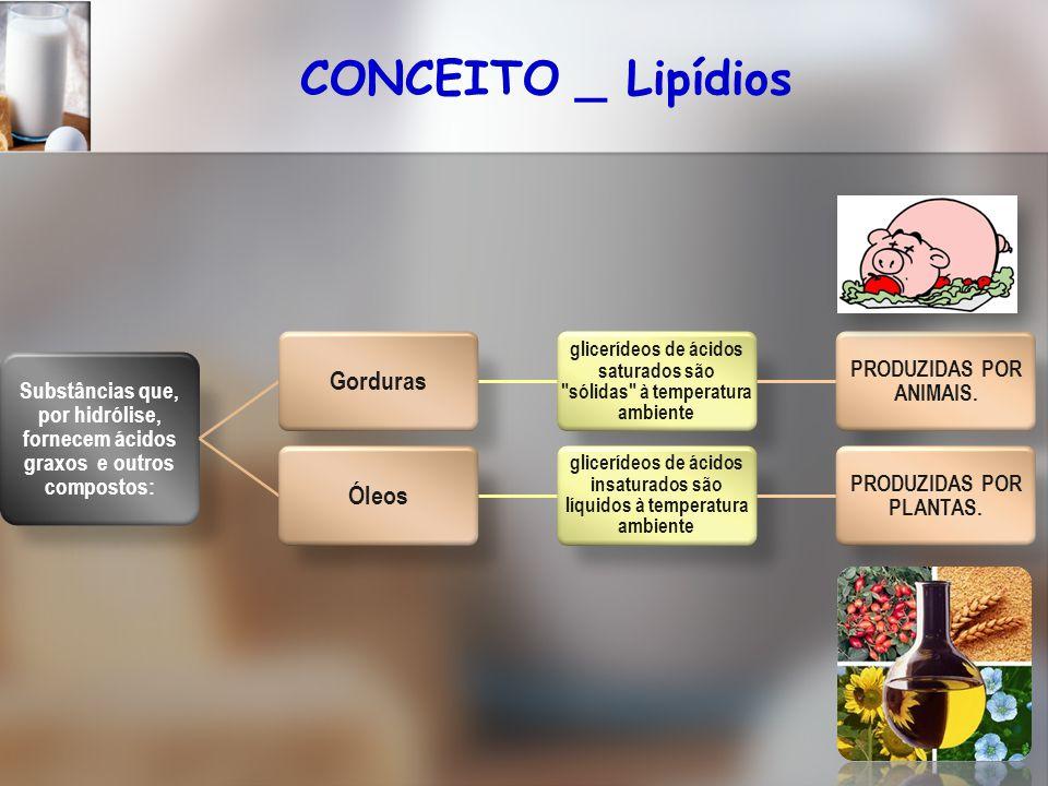 CONCEITO _ Lipídios Gorduras Óleos