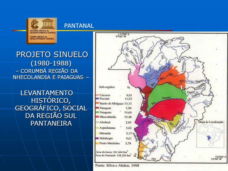 PANTANAL PROJETO SINUELO (1980-1988) – CORUMBÁ REGIÃO DA NHECOLANDIA E PAIAGUAS –