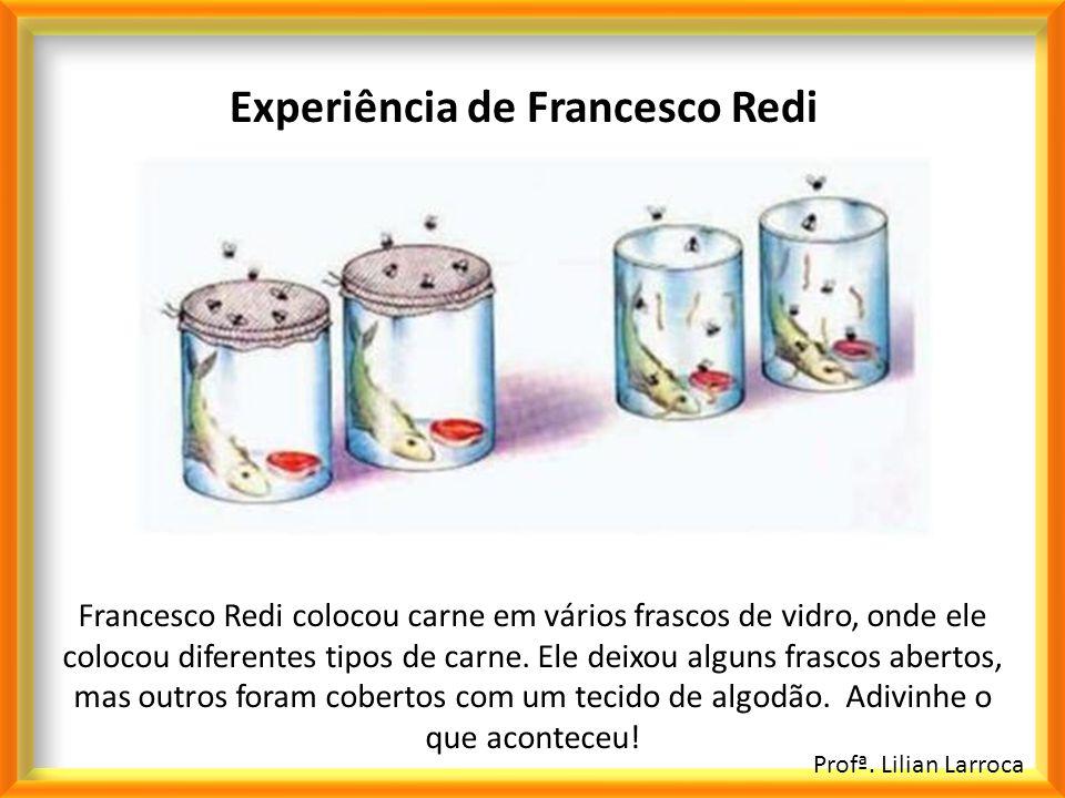 Experiência de Francesco Redi