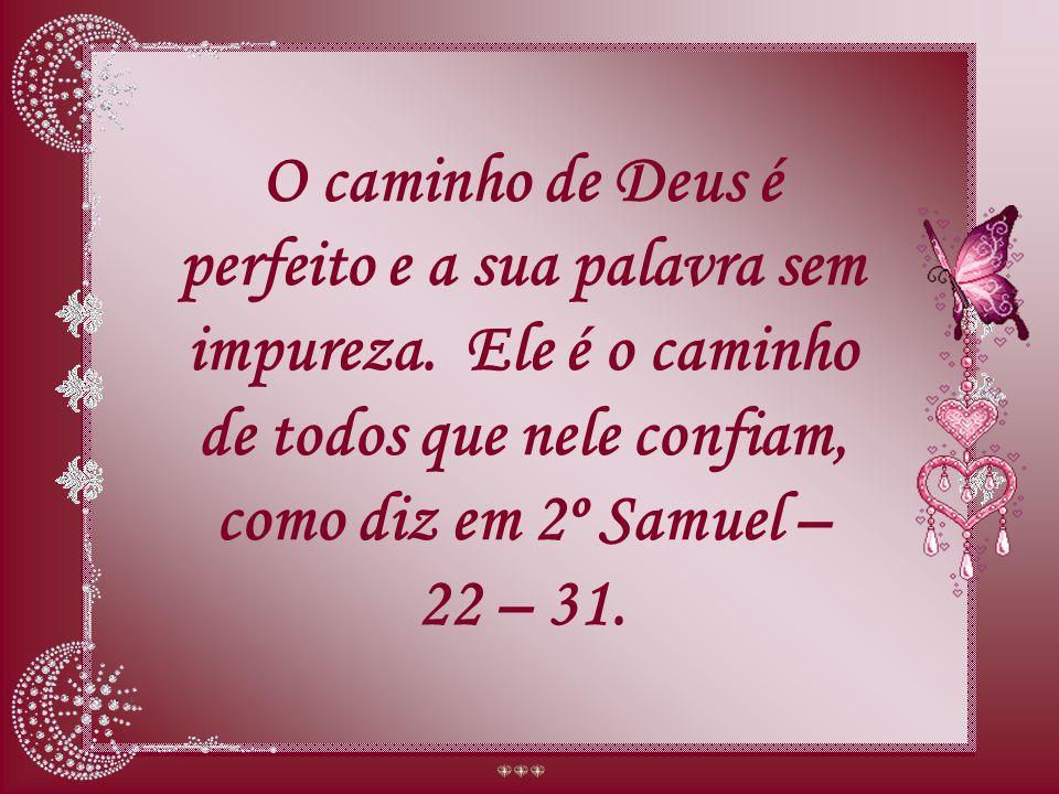 O caminho de Deus é perfeito e a sua palavra sem impureza