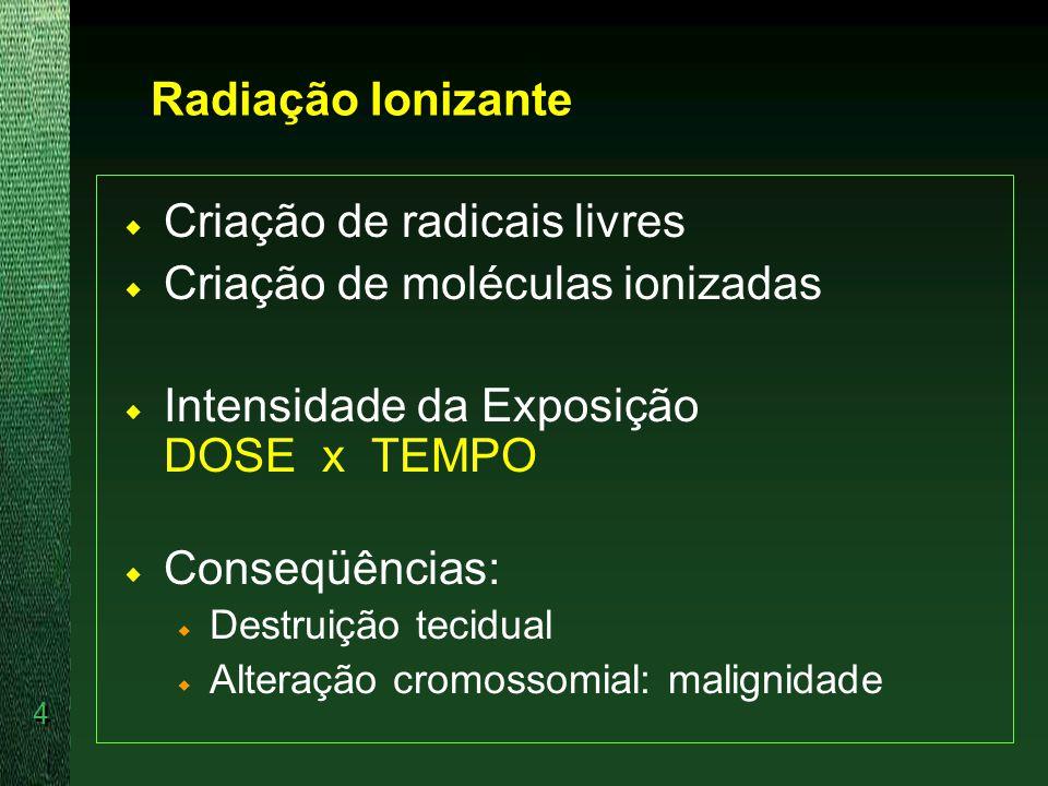 Criação de radicais livres Criação de moléculas ionizadas