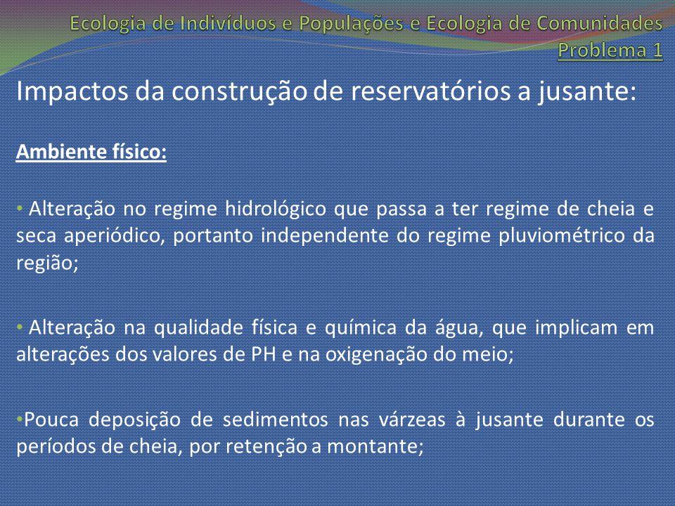 Impactos da construção de reservatórios a jusante: