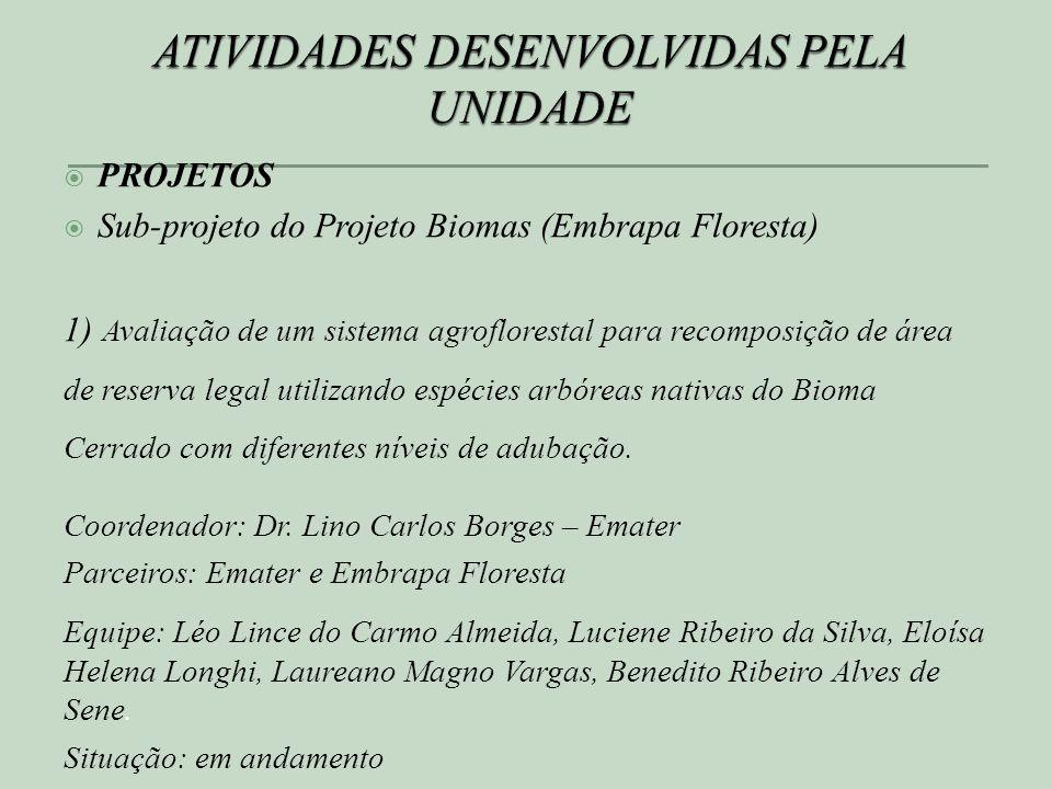 ATIVIDADES DESENVOLVIDAS PELA UNIDADE