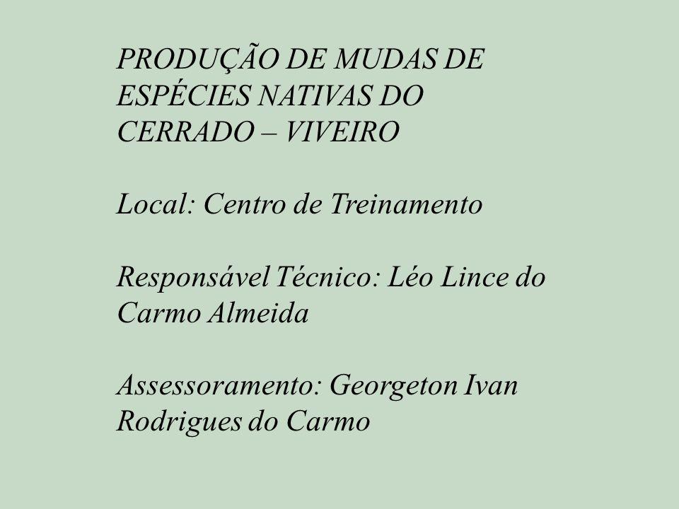 PRODUÇÃO DE MUDAS DE ESPÉCIES NATIVAS DO CERRADO – VIVEIRO