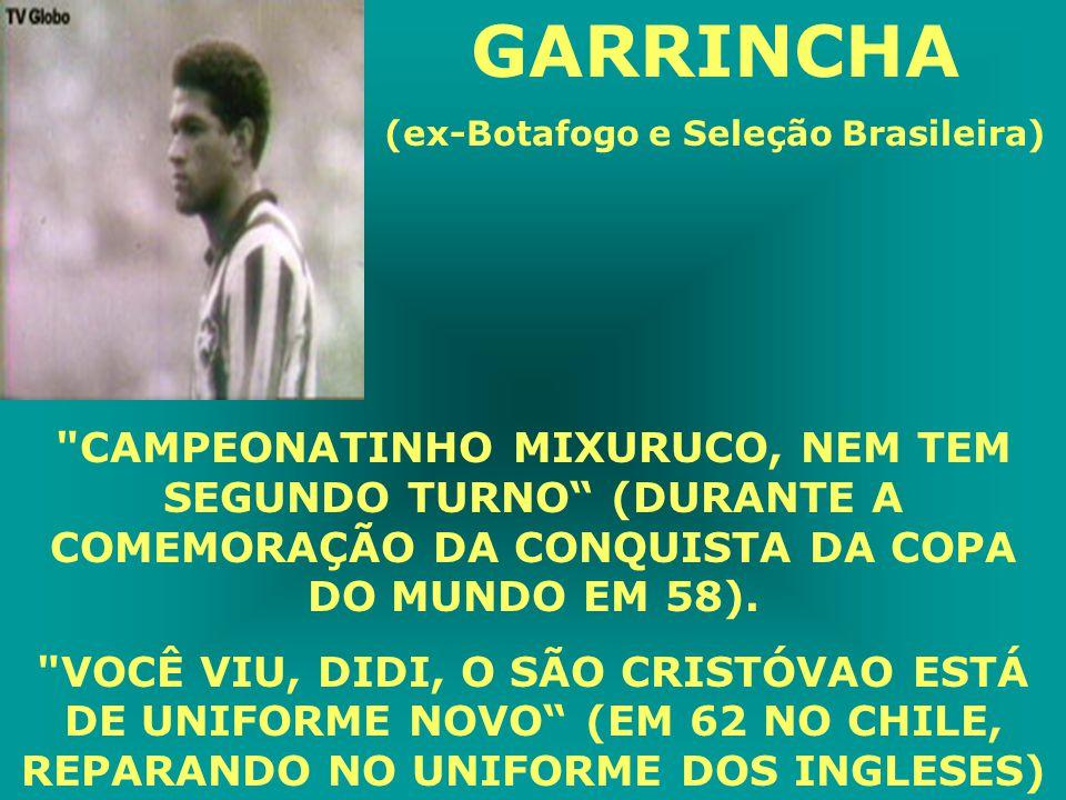 (ex-Botafogo e Seleção Brasileira)