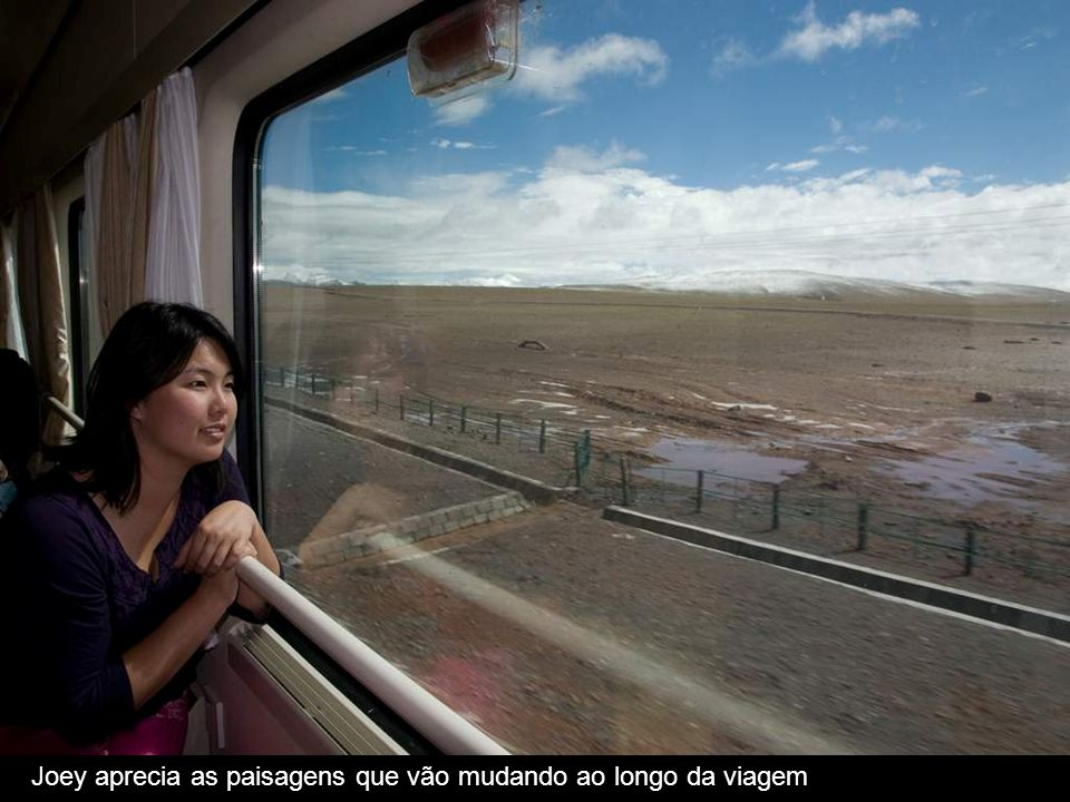 Joey aprecia as paisagens que vão mudando ao longo da viagem