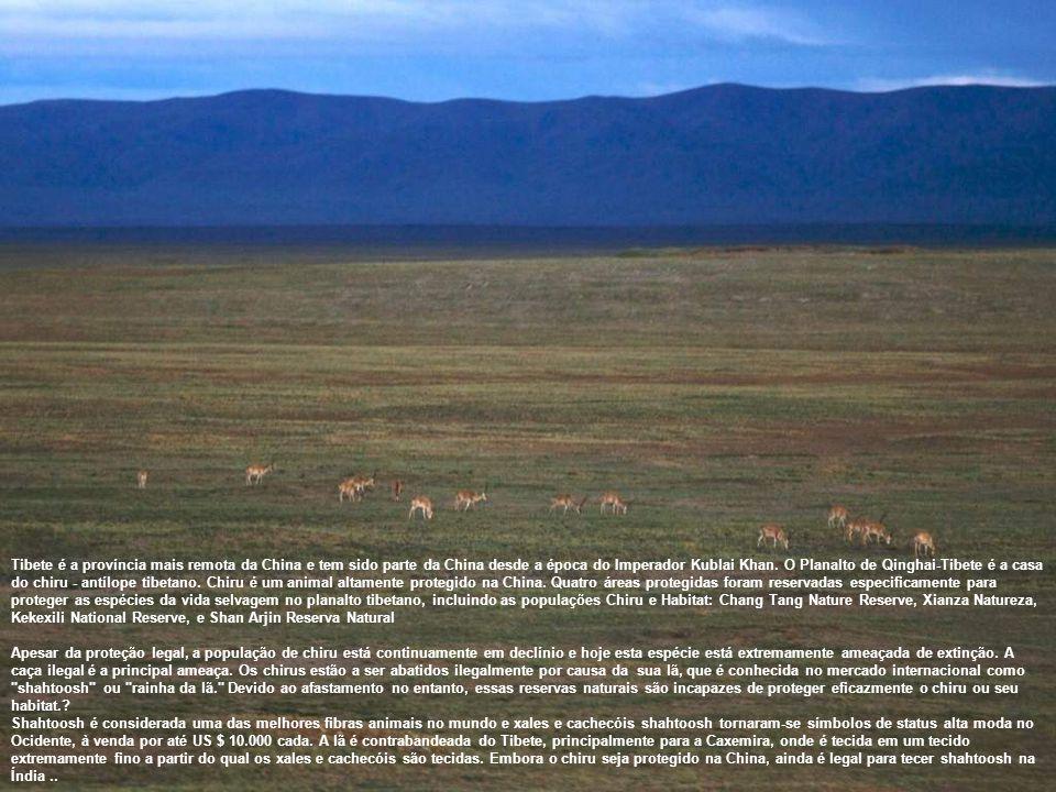 Tibete é a província mais remota da China e tem sido parte da China desde a época do Imperador Kublai Khan.