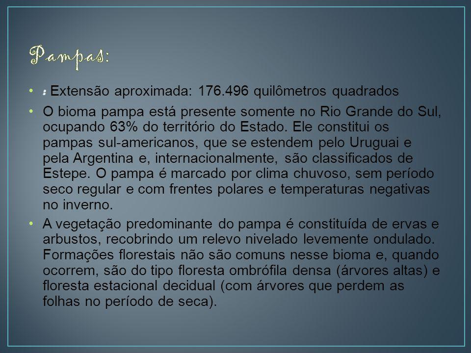 Pampas: : Extensão aproximada: 176.496 quilômetros quadrados
