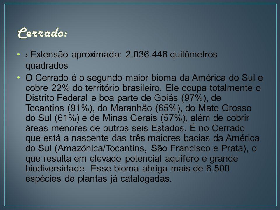 Cerrado: : Extensão aproximada: 2.036.448 quilômetros quadrados