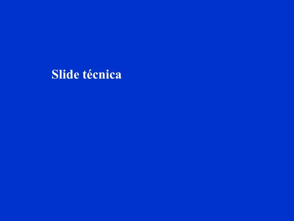 Slide técnica